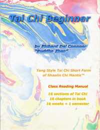Book cover of TAI CHI BEGINNER by Buddha Z